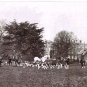 Barton Hall hounds
